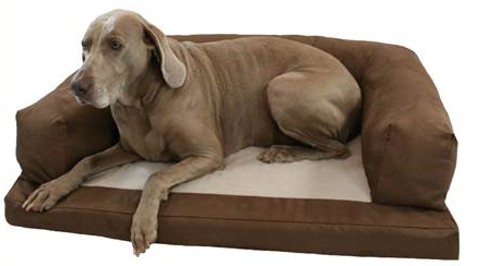 Baxter Couch Dog Bed Large